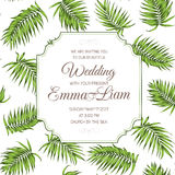 Wedding invitation card greenery palm leaves RSVP. Wedding event celebration invitation RSVP card. Tropical exotic palm tree greenery branch leaves background Stock Photos