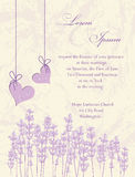 Wedding invitation card.  Lavender background. Wedding invitation card, flyer design, packaging design. Lavender background, product labels. Vector illustration Royalty Free Stock Photography