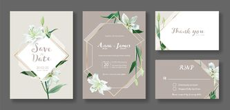 Wedding Invitation card, save the date, thank you, rsvp template. Vector. White lily flower. royalty free stock photo