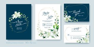 Wedding Invitation card, save the date, thank you, rsvp template. Vector. White lily flower, silver dollar plant, olive leaves, royalty free stock photo