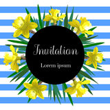 Wedding invitation card with yellow narcissus can be used as invitation card for wedding Stock Images
