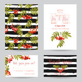 Wedding Invitation or Congratulation Card Set Royalty Free Stock Image