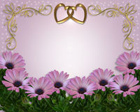 Wedding invitation Daisy Border Royalty Free Stock Image