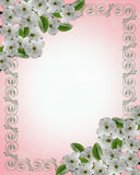 Wedding invitation Dogwood Border Stock Photo