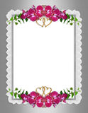 Wedding invitation elegant orchids Royalty Free Stock Photography