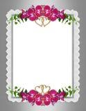 Wedding invitation elegant orchids Royalty Free Stock Photography
