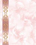 Wedding Invitation Elegant Pink Stock Images