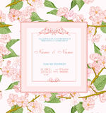 Wedding invitation with flowers. Spring cherry blossom Royalty Free Stock Photography