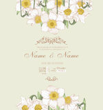 Wedding invitation with flowers. Spring narcissus. Stock Photography