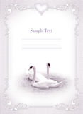 Wedding invitation, frame, swan Royalty Free Stock Photo