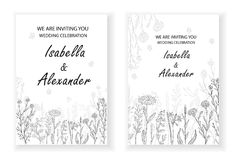 Wedding invitation frames with herbs and wild flowers. Hand drawn vintage vector illustration. Line art style Vector Illustration