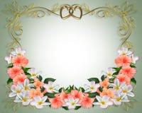 Wedding Invitation Hibiscus Plumeria Royalty Free Stock Image