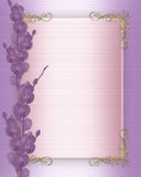 Wedding Invitation Orchids border Stock Photos