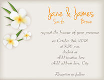 Wedding invitation with plumeria flowers Stock Photography