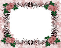 Wedding Invitation Red Roses Ornamental. Red Roses on ornamental frame Illustration composition for birthday party, wedding invitation, background, card or Stock Photos