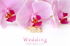 Wedding invitation. Wedding rings on background of orchids Stock Photo