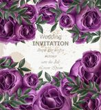 Wedding Invitation roses card Vector. Beautiful violet roses flowers decor. Elegant decor vintage backgrounds. Wedding Invitation roses card Vector. Beautiful stock illustration