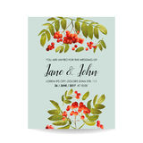 Wedding Invitation Template. Floral Save the Date Card with Rowan Berry. Decoration for Marriage Party Celebration Royalty Free Stock Photos