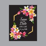 Wedding Invitation Template with Pink Plumeria Flowers. Tropical Floral Save the Date Card. Exotic Flower Design Royalty Free Stock Photos