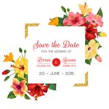 Wedding Invitation Template with Red Hibiscus Flowers and Golden Frame. Save the Date Floral Card for Greetings Royalty Free Stock Photography