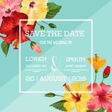 Wedding Invitation Template with Red Hibiscus Flowers. Save the Date Floral Card for Greetings, Anniversary, Birthday. Baby Shower Party. Botanical Design Stock Photos