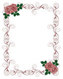 Wedding Invitation Template Red Roses Stock Photography