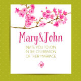 Wedding invitation template with sakura flowers Royalty Free Stock Images