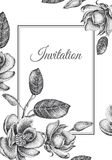 Wedding invitations templates cards with flowers magnolias. Royalty Free Stock Photography