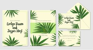 Wedding invite, envelope, rsvp, holiday card. Design with Green. Howea palm leaves on a beige background and frames in summer style. Vector tropical layout Stock Photo