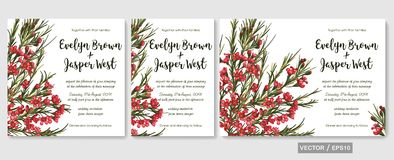 Wedding invite invitation menu card vector floral design: beautiful red waxflower pattern. Element for banners, greeting cards, f. Wedding invite invitation menu stock illustration