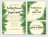 Wedding invite, invitation rsvp thank you card vector floral gre. Enery design: beautiful leaves of the sago, kentia, areca, coconut, foliage herbs elegant frame Royalty Free Stock Images