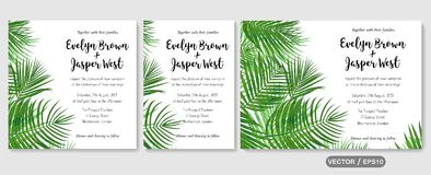 Wedding invite, invitation rsvp thank you card vector floral gre. Enery design: Forest tropical palm leaf Areca branch green, foliage herbs elegant frame border Royalty Free Stock Image