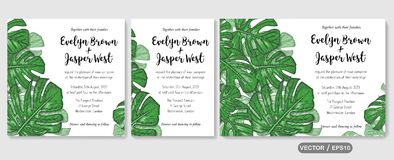 Wedding invite, invitation rsvp thank you card vector floral greenery design: tropical palm leaf philodendron, monstera branch gr. Wedding invite, invitation stock illustration