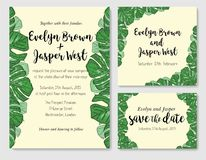 Wedding invite, invitation rsvp thank you card vector floral gre. Enery design: beautiful leaves of tropical evergreen liana monstera, foliage herbs elegant Stock Photography
