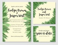 Wedding invite, invitation rsvp thank you card vector floral gre. Enery design: beautiful leaves and branches of the sago palm, foliage herbs elegant frame Royalty Free Stock Photos