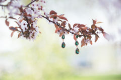 Wedding jewelry bridesmaid. Wedding emerald jewelry bridesmaid on the tree Stock Photography