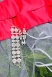 Wedding jewels. Royalty Free Stock Photo