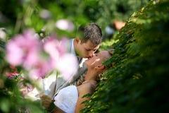 Wedding kiss Stock Photos