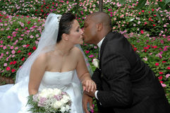 Wedding Kiss. Wedding day portrait of a mixed racial couple. Bride and groom kneeling on in a garden he is kissing her Royalty Free Stock Photography