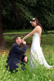 Wedding kiss. Wedding pictures, the couple just married Royalty Free Stock Photos