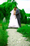 Wedding kiss on a path in summer. Wedding walk in the park on a sunny summer day Stock Image