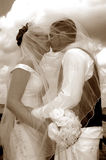 Wedding kiss sepia. A close up of a couple kissing under a veil outdoors in sepia tone stock photography