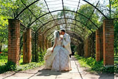 Wedding. Kissing couple Stock Images