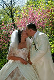 Wedding. Kissing couple Royalty Free Stock Images