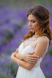Wedding lavender field. Royalty Free Stock Photo