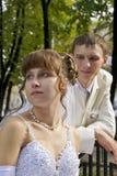 Wedding, les nouveaux mariés Photographie stock libre de droits