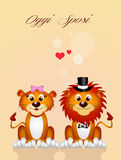 Wedding of lions Stock Images