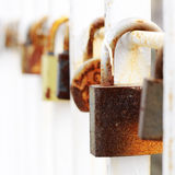 Wedding lock hanging on the metal fence Royalty Free Stock Photos