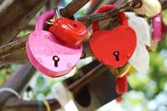 Wedding lock Stock Photography