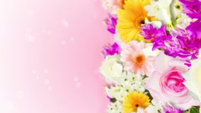 Many colorful flowers loop animation. Rainbow color flowers. Garden filled with multicolored flowers. Wedding loop animation. Many flower scene of rainbow color stock video